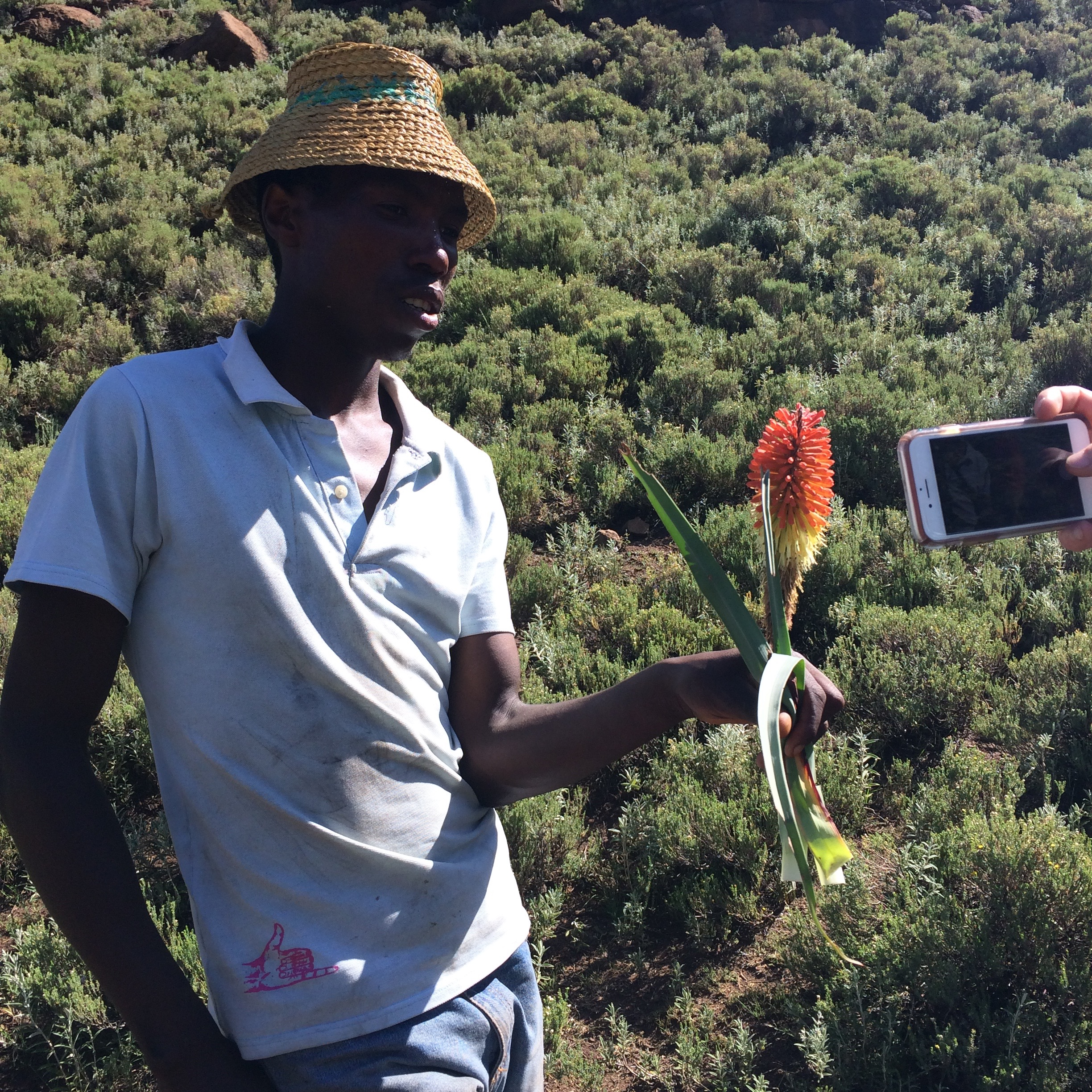 Dispatch from Lesotho